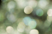 a dreamlike green bokeh background