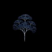 a fractal generated pattern that looks like a tree and tree trunk